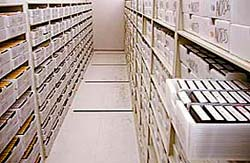 Shelves in the upper vault hold drawers full of microfilm.
