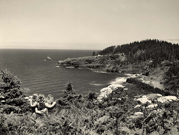 Three women with arms around each other look out from a view point over ocean waters on the left and coast line with trees right