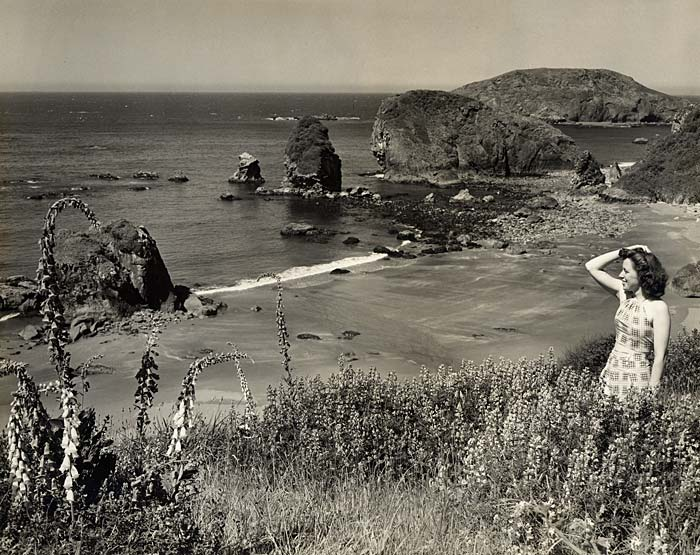A woman stands on a grassy, flowered hillside looking out over the coast line with large rock formations just off shore.