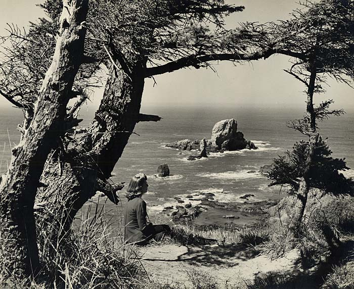Woman sits on hillside with grass and short trees looking out over ocean to Seal Rocks in center.