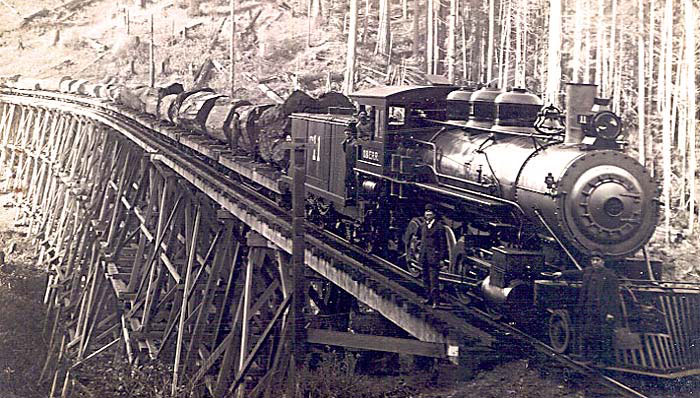 Wide Old Railroads | The old railroad tracks that are not