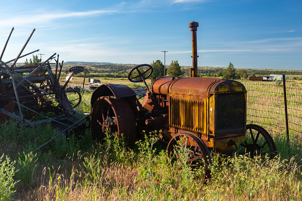 A rusted old tractor sits in a field with weeds and grass growing about knee high. Other scrap metal lies to the left in back.