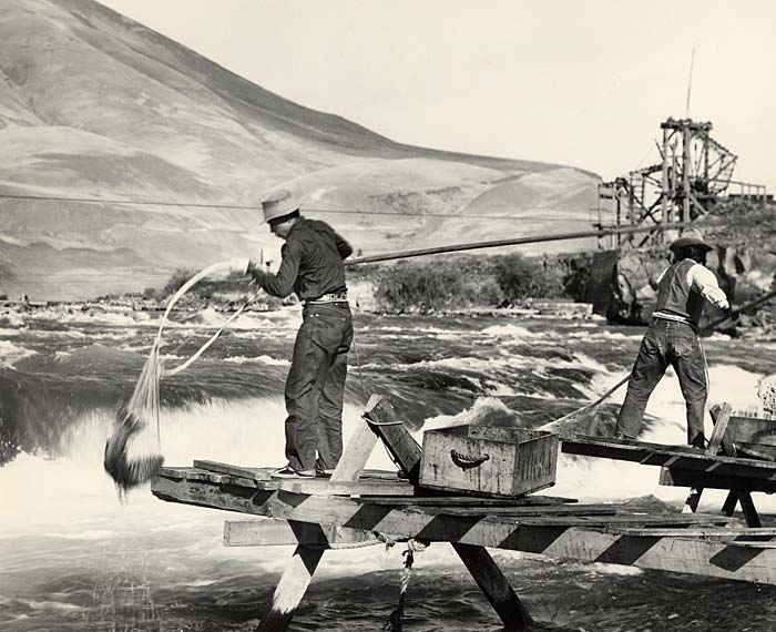 Two Native American men stand on wood scaffolding and dip nets into the water. One pulls out a fish.