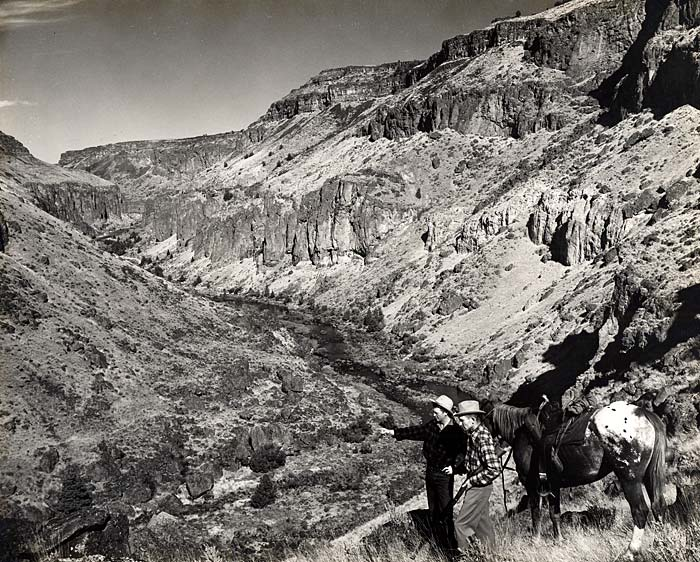 Two men with a horse look out over Owyhee Canyon.