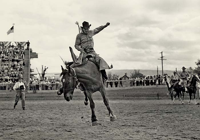 Cowboy on a bucking horse at the Pendleton Round-up.