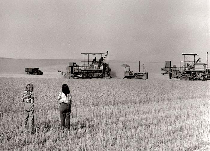 Two women stand in a wheat field watching farm equipment harvesting wheat.