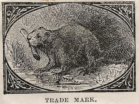 Drawing of beaver with log in mouth on the bank of a water feature.