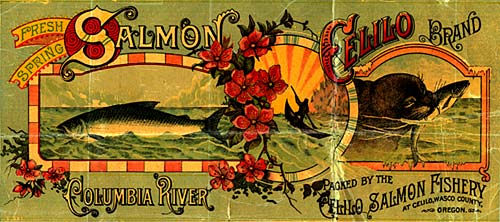 "Drawing of salmon in river on left. Drawing of otter with salmon in mouth on right. Reads ""Fresh spring salmon Celilo Brand"""