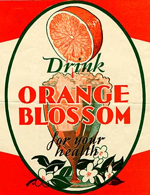 "Drawing of thin stem glass with wide mouth full of frothy liquid. Reads ""Drink Orange Blossom for your health"""
