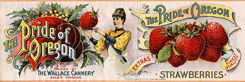 Drawing of woman holding tray with abnormally large strawberry. Strawberry is bigger than her head. Next to bunch of berries.