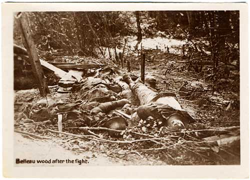 Dead German soliders lie in wooded area.