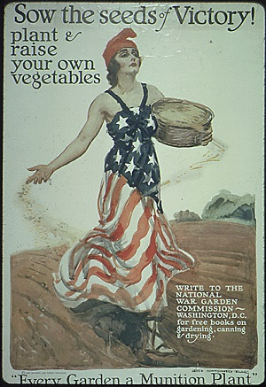 "Drawing of woman in american flag dress throwing seed in a field. ""Sow the seeds of Victory! plant & raise your own vegetables"""