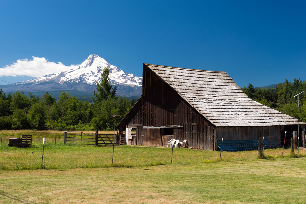 Farmhouse with pasture area in front and Mt. Hood in the background on a blue sky day.
