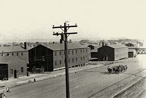 Photo of many large buildings, a telephone pole and no trees in sight.