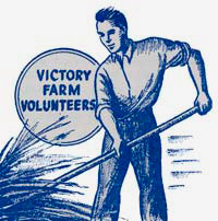 "Drawing of man raking or harvesting wheat. Text reads ""Victory farm volunteers"""