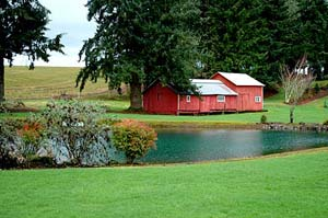 Red barn next to calm pond on bright green lawn. Trees behind house partially shield farmland in the back.