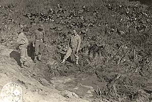 3 soldiers stand in a filed of skunk cabbage with a hole in the middle.