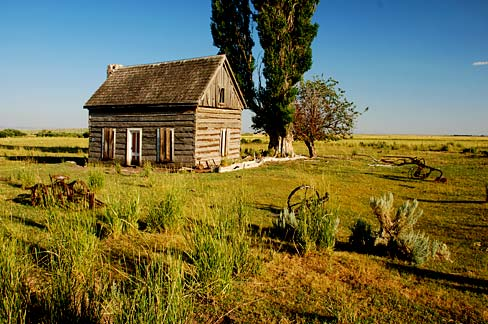 small log cabin sits in a green grass field with few trees.