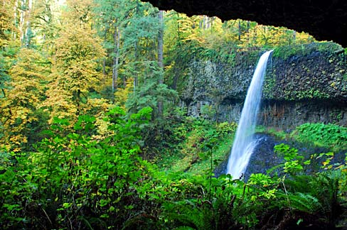 Waterfall plunging off a steep cliff into a lush, green forest area.