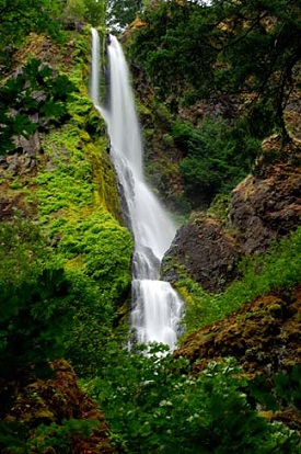Waterfall tucked between high rocks and lush vegitation in the Columbia Gorge.