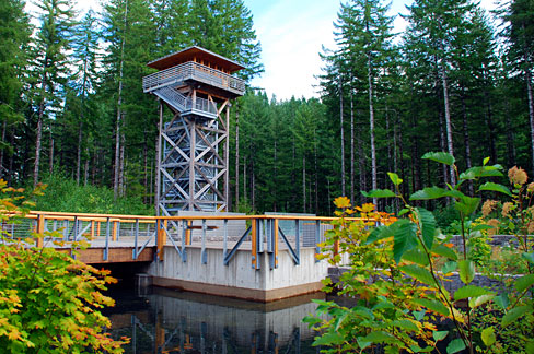 Forest lookout tower in Tillamook.