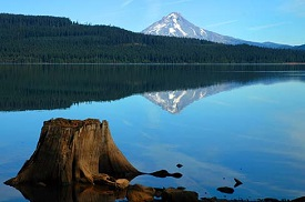 Timothy lake with an old stump of a tree in the foreground and Mt. Hood with sparse snow on top in the background.