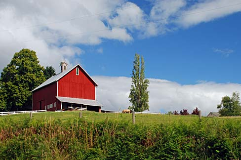 Traditional red barn with expansive field in front and trees to the back and side.