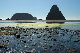 Oregon beach with tall and wide rock formations at the water line.