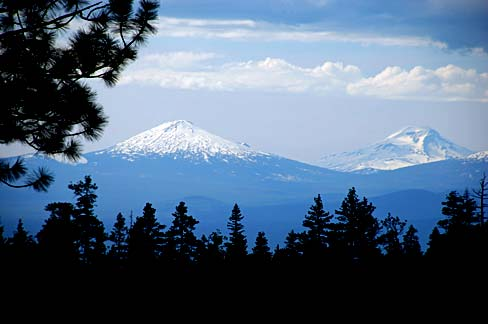 Two snow capped mountains seen in the distance with evergreen trees closer to viewer.