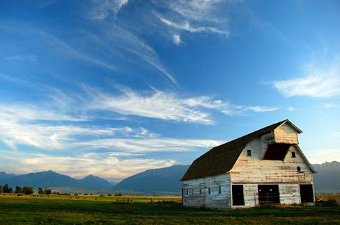 A weathered barn stands in a field with whispy clouds overhead in a blue sky.
