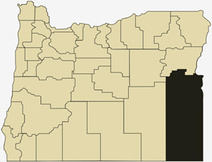 Oregon county map with Malheur County shaded