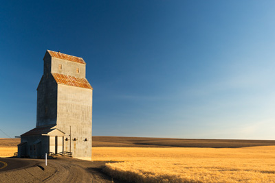 grain elevator next to wheat field