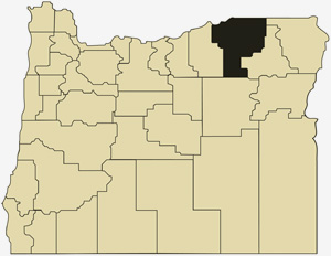 Oregon county map with Umatilla County shaded