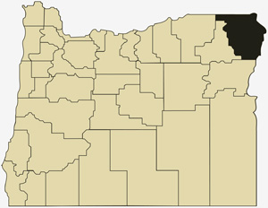 Oregon county map with Wallowa County shaded