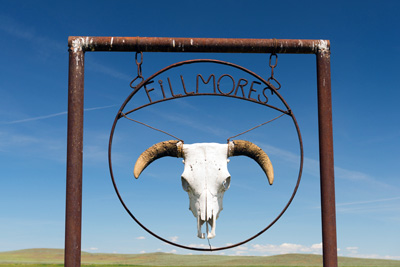 ranch sign with cow skull on it